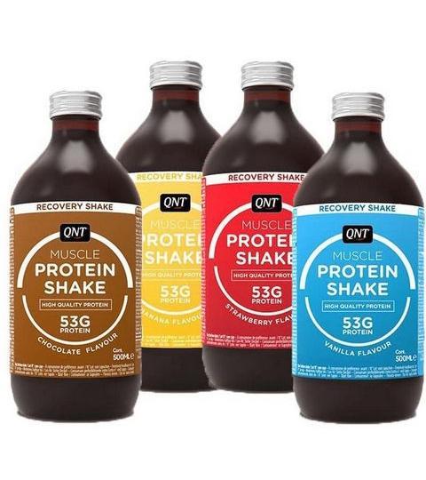 QNT- PROTEIN SHAKE  ( 500 ml )